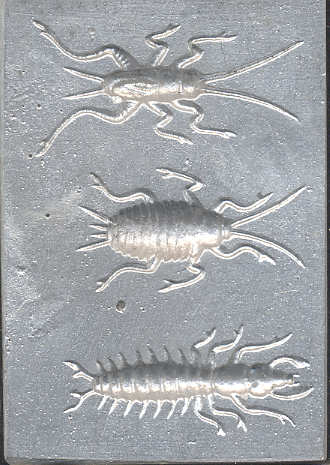 Mj thompson 39 s creepy crawlers for Fishing lure molds